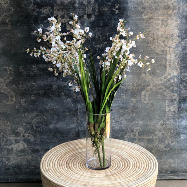 Tall Vase/ White Dancing Orchids
